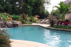 natural looking in ground pools. Gardening Landscaping : Small BackyLuxury Swimming Pool Natural Looking In Ground Pools