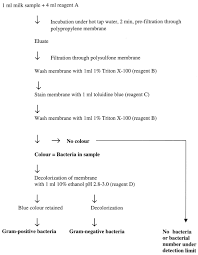 Rapid Method For Detection Of Gram Positive And Negative
