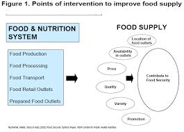 food security essay essay on food security organic food essay organic food essay dnnd the canberra youth ag declaration