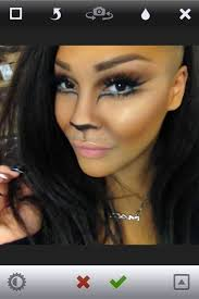 sophisticated cat makeup games