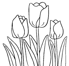 Small Picture Tulip Coloring Pages 28472 Bestofcoloringcom