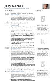 Board Member On Resume Board Member Resume Samples Visualcv Resume