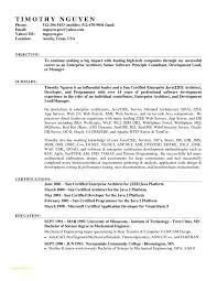 Free Professional Resume Templates Microsoft Word 2007 With Free