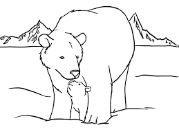 Cute Polar Bear Color Pages To