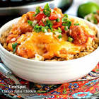 cheesy salsa chicken   crock pot