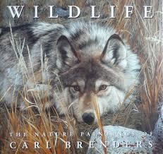 wildlife the nature paintings of carl brenders carl brenders 9780810939776 books ca