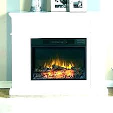 wood fireplace insert glass doors electric reviews plus s for make rema