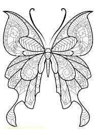 Butterfly coloring pages are fun to color, and can teach your child about the life cycle and other science concepts. Free Printable Butterfly Coloring Pages Free Printable Butterfly Coloring Pages For Butterfly Pictures To Color Butterfly Coloring Page Mandala Coloring Pages