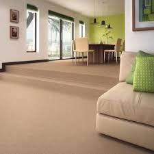 Large Living Room Rugs Large Living Room Carpets Nomadiceuphoriacom