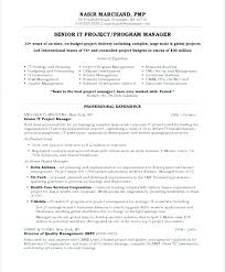 Manager Resume Template Microsoft Word It Project Manager Resume