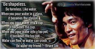 Bruce Lee Water Quote Delectable Bruce Lee Quote Be Shapeless Be Formless Like Water Gnostic