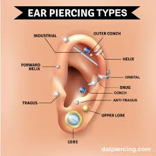 Ear Piercing Chart For Anxiety The Different Types Of Ear Piercing And Their Names Dat