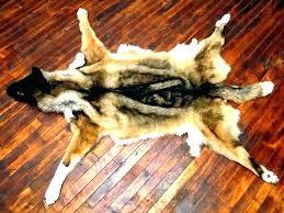 real polar bear rug fur skin hide faux with head pol