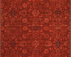 rugs ideas astonishing fred meyer area image inspirations