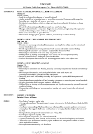 Management Resume Modern Modern Risk Management Resume Examples Audit Risk Management
