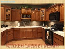 kitchen cabinets kitchens design cabinets to go houston tx