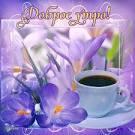 С добрым утром открытки с цветами