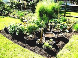 Kitchen Garden In Pots Vegetable Gardening For Organic Container Garden Layout Ohio Post