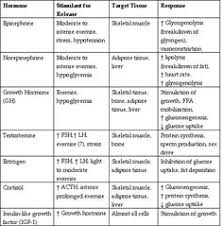 Hormones And Their Functions Chart 193 Best Endocrine Hormones Images Endocrine Hormones
