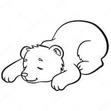 Kleurplaten Wilde Dieren Kleine Schattige Baby Beer Slaapt