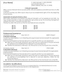 Project Management Sample Resumes Sample It Project Manager Resume