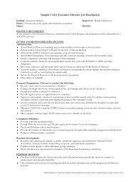 Profit Professional Resume