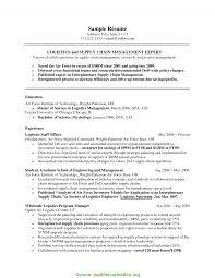 Regular It Manager Resume Objective Statement Sample Resume
