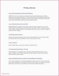 Example Resume Fresh Graduate Information Technology New Free Cv