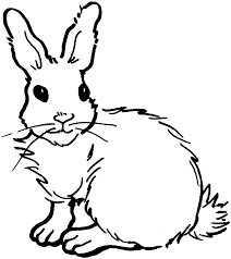 realistic rabbit coloring pages.  Realistic In Realistic Rabbit Coloring Pages