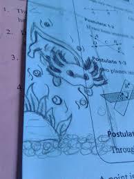 4,833 likes · 5 talking about this. My Chibi Axolotl Sketch Axolotl Amino Amino