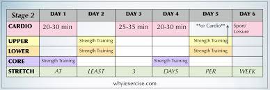 free exercise program workout calendar