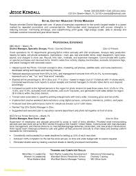 Sample Resume Summary New 20 Job Responsibilities For Resume ...