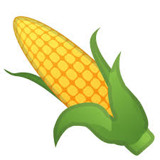 ear of corn clipart. Contemporary Corn Banner Black And White Ear Of Corn Clipart  Throughout Of Corn Clipart