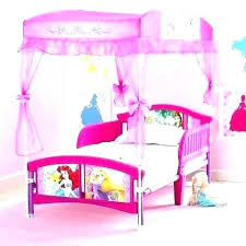 canopy toddler bed girl – collegesainteanne.net