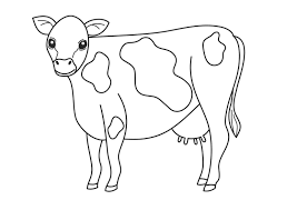 Small Picture cow coloring pages Wallpapercraft