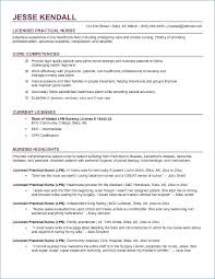 Free Rn Resume Template Interesting Free Rn Resume Templates Resumelayout