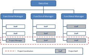 Example Of Functional Chart Organizational Structure Types For Project Managers