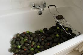 Avocado Bathroom Suite Marmite Soup Related Keywords Suggestions Marmite Soup Long