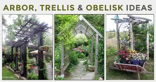 30 arbor trellis obelisk ideas for