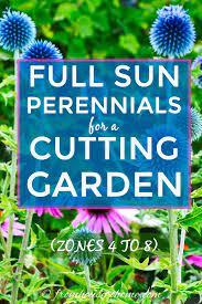 summer cutting garden