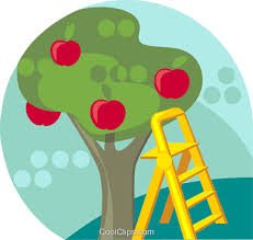 apple tree clip art png. apple tree with ladder royalty free vector clip art illustration png