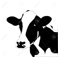 beef cow head clip art. Modren Beef For Beef Cow Head Clip Art O