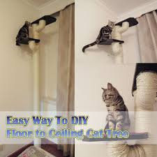 there are 2 post about how to diy floor to ceiling cats tree hopes helpful for you