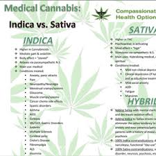 Sativa And Indica Chart Links To Products Offered At High Tides Cannabis Dispensary