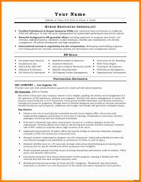 Download Free Professional Resume Templates New Resume Format For