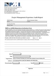 pmp application form job experience receipt invoice template it