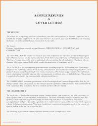 Functional Resume Sample Kizi Gamesme