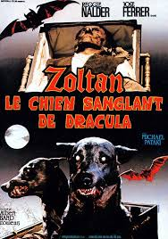 french movie poster for the horror film zoltan hound of dracula  french movie poster for the horror film zoltan hound of dracula aka dracula s dog