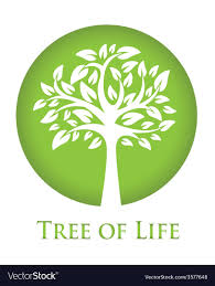 Tree Of Life Graphic Design Tree Of Life