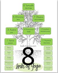 8 Limbs Of Yoga Chart Infographics Ashtanga Yoga Eight Limbs Of Yoga Yoga